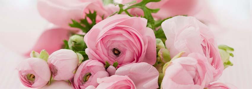 giv et gavekort i form af smukke roser til mors dag
