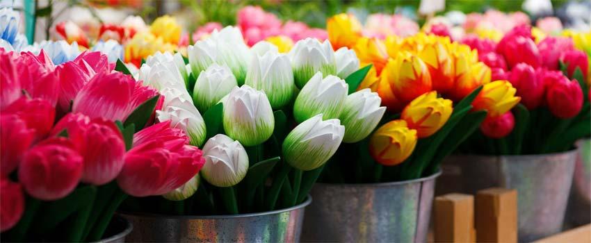 find de smukke blomster til mors dag
