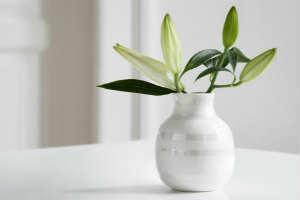giv en Omaggio perlemor vase