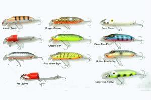Find gode blink til den billige fiske gave