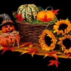 Det fede halloween udklædning til dit barn