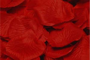 Giv hende smukke røde roser